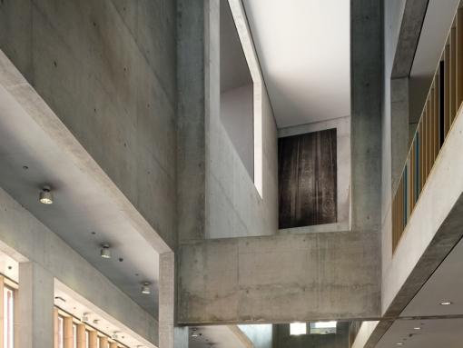 La collection d'art et l'architecture
