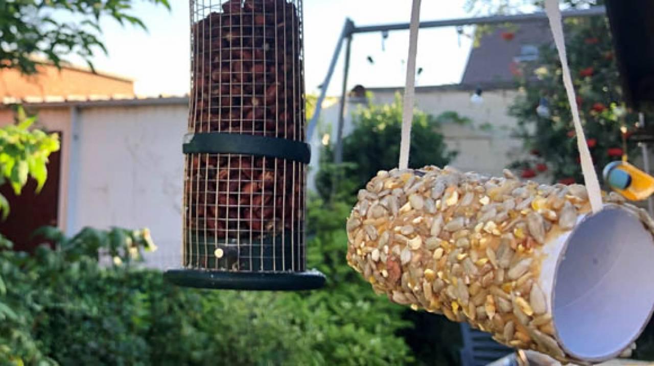 Geef het rolletje een plekje in de tuin (best in de schaduw) waar de vogels kunnen komen smullen van jouw zelfgemaakt tussendoortje.
